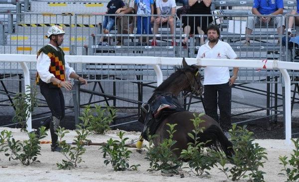 Commissione veterinaria, si cambia: più visite e sicurezza per i cavalli