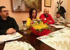 Cartellone di Natale, più di 50 eventi per 15mila euro